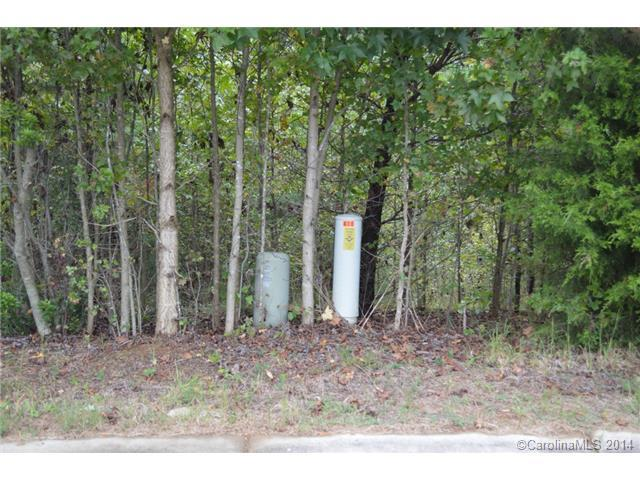 Lot 23 Buford Drive, Landis, NC 28088 (#3037055) :: High Performance Real Estate Advisors