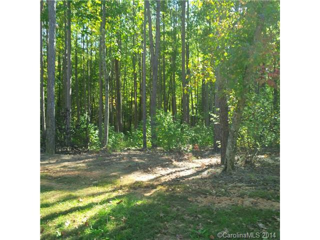 911 Irish Creek Drive Lot 6, Landis, NC 28088 (#3037967) :: TeamHeidi®