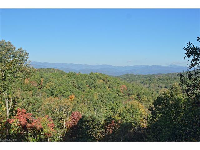 6 Falls View Drive, Pisgah Forest, NC 28768 (#3122384) :: Miller Realty Group