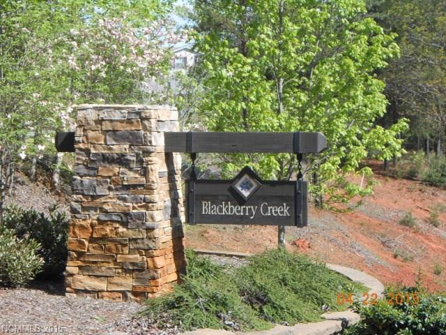 Lot 73 Blackberry Creek - Photo 1