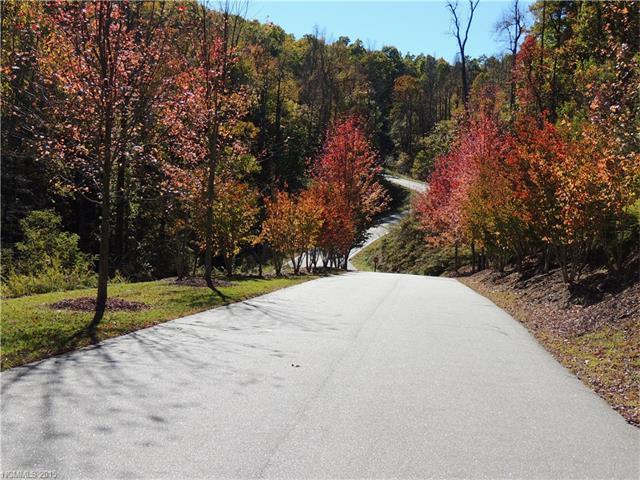 Lt 72 Mountain Falls Trail, Black Mountain, NC 28711 (#3129529) :: Exit Realty Vistas