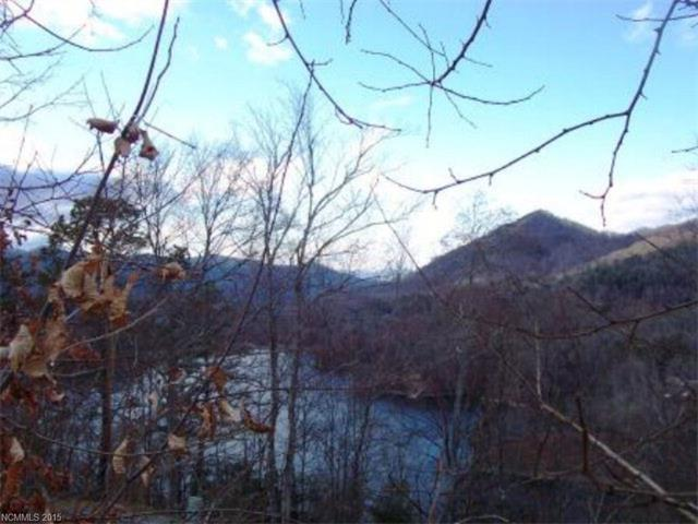 Lot #205 Brookwood Drive #205, Tuckasegee, NC 28783 (#3130815) :: Miller Realty Group