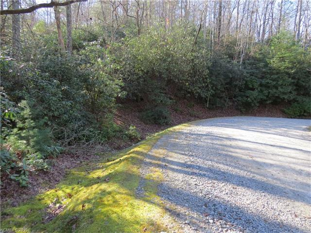 L18 Marshall Lake Road, Cedar Mountain, NC 28718 (#3131257) :: RE/MAX Metrolina