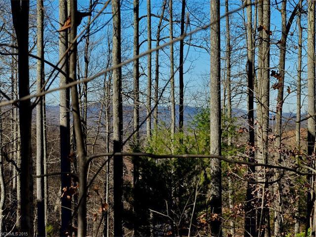 2314 Pommel Road, Hendersonville, NC 28791 (#3131331) :: Miller Realty Group