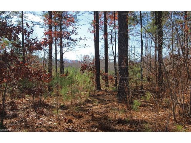 22 Loblolly Lane #22, Mill Spring, NC 28756 (#3131968) :: Charlotte Home Experts