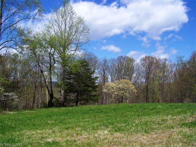 660 Freemantown Road #8, Rutherfordton, NC 28139 (#3132162) :: Puffer Properties
