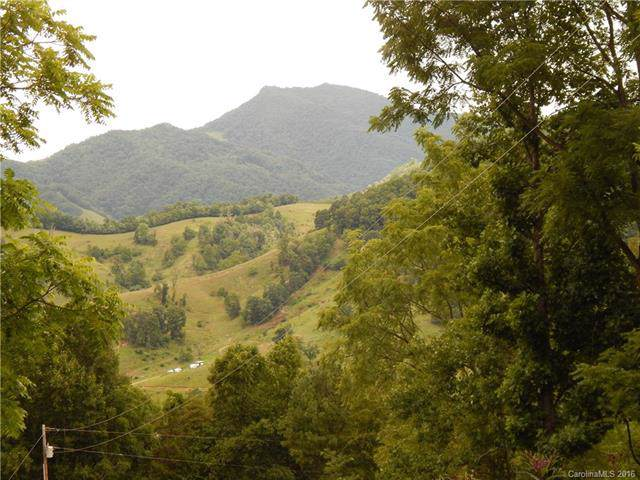 00 Glade Road, Waynesville, NC 28786 (#3134268) :: IDEAL Realty