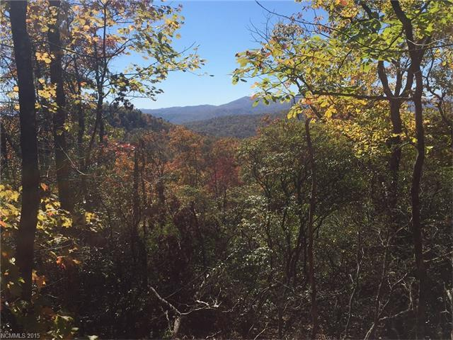 Lot 16 Laureldale #16, Pisgah Forest, NC 28768 (#3135943) :: RE/MAX Four Seasons Realty