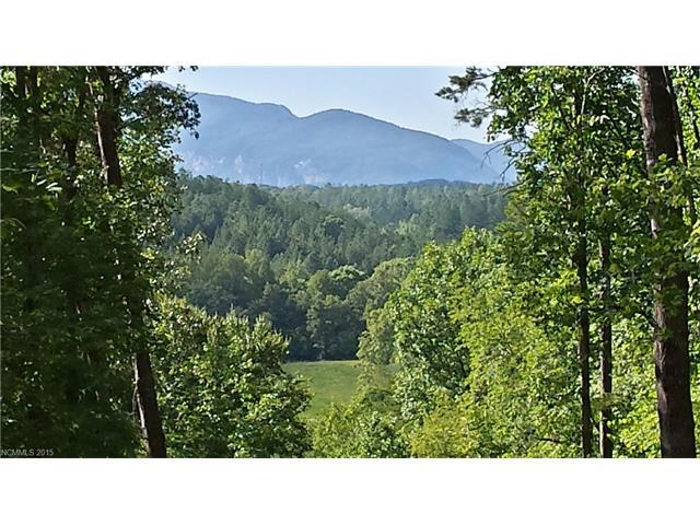 LOT 3 Cross Creek Trail, Mill Spring, NC 28756 (#3137308) :: RE/MAX Four Seasons Realty