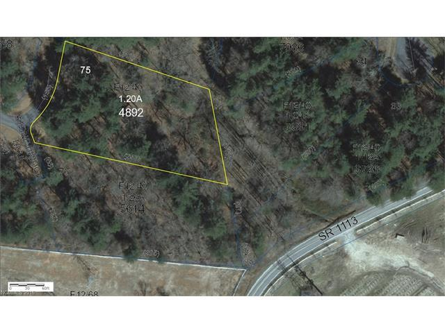 L75 Mountain Home Trail #75, Brevard, NC 28712 (#3137827) :: Caulder Realty and Land Co.