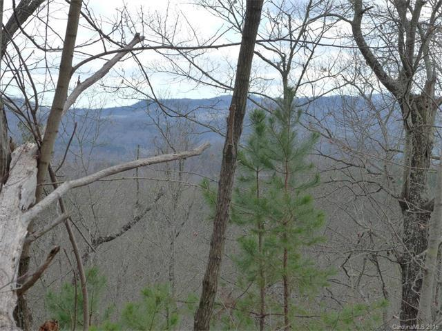 14 Spring House Trail, Brevard, NC 28712 (#3138188) :: The Ann Rudd Group