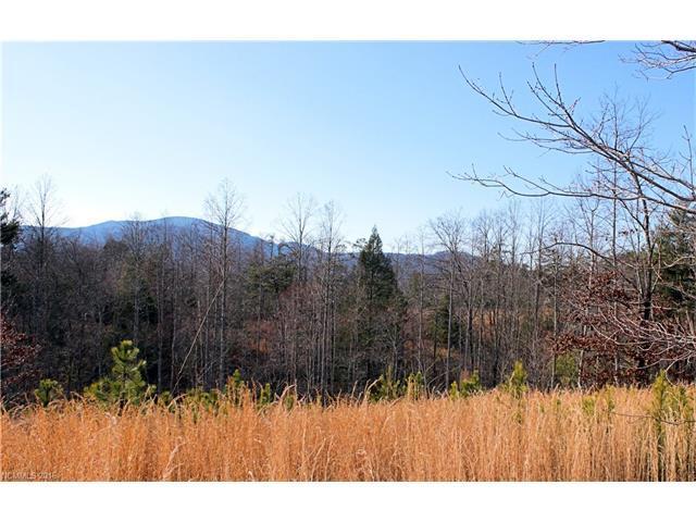 07 Woods Laurel Lane #07, Mill Spring, NC 28756 (#3139226) :: Rinehart Realty