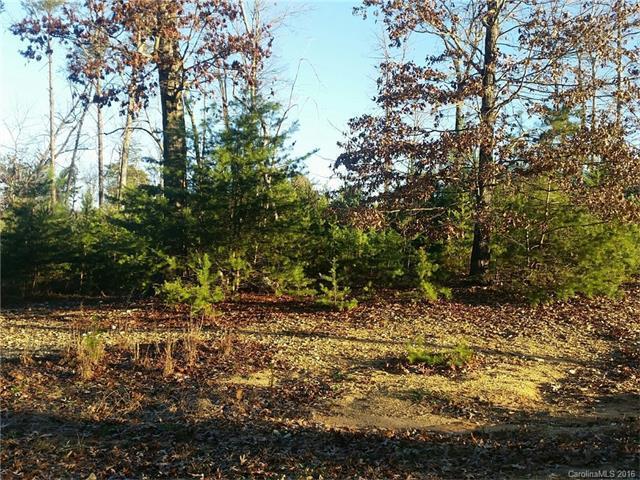 1018 Riverwood Drive, Salisbury, NC 28146 (#3139993) :: Rinehart Realty