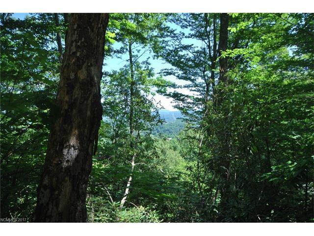 tbd Poplar Crest Drive, Pisgah Forest, NC 28768 (#3142672) :: Rinehart Realty