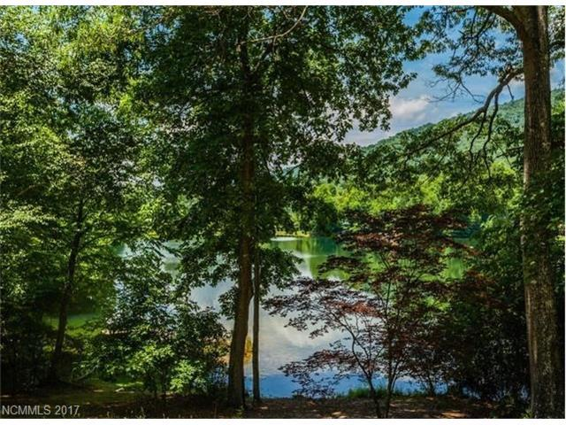 9999 Echo Lake Drive, Fairview, NC 28730 (#3142733) :: Stephen Cooley Real Estate Group