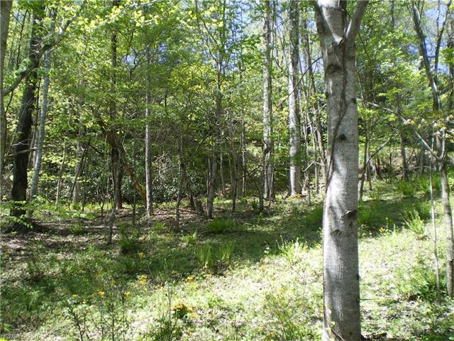 Lot 7 Pisgah Forest Drive, Pisgah Forest, NC 28768 (#3145045) :: Rinehart Realty