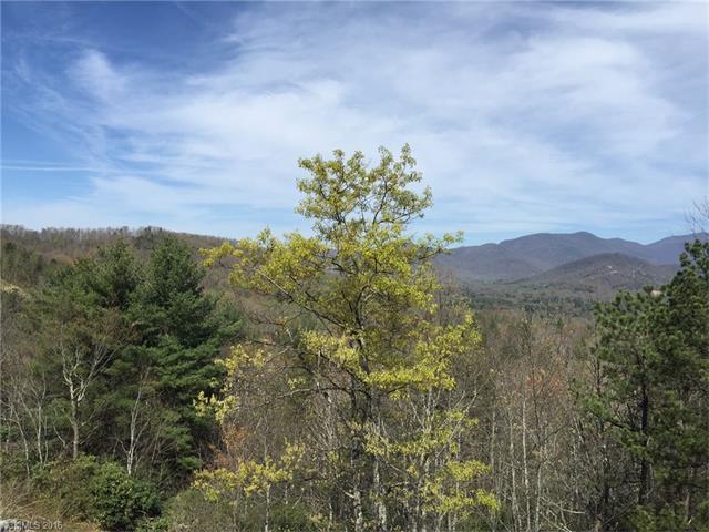 187 Settings Boulevard #237, Black Mountain, NC 28711 (#3145458) :: Exit Realty Vistas
