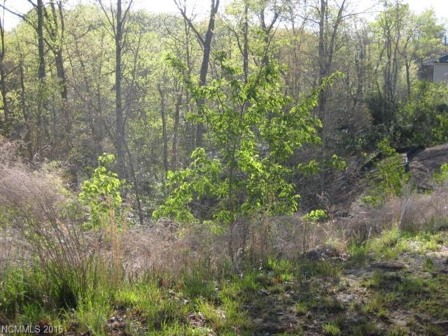152 Preserve Court, Hendersonville, NC 28791 (#3146150) :: Miller Realty Group