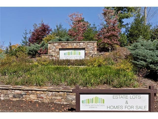 88 Longspur Lane #63, Asheville, NC 28804 (#3146509) :: RE/MAX Four Seasons Realty