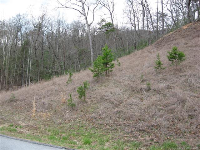 Lot # 15 Quail Ridge Road #15, Lake Lure, NC 28746 (#3150755) :: Washburn Real Estate