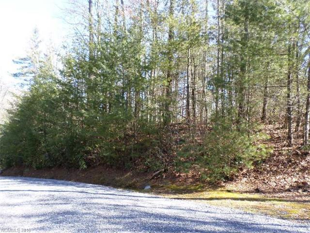 Lot 108 Dream Forest Trail #108, Waynesville, NC 28785 (#3151408) :: Miller Realty Group
