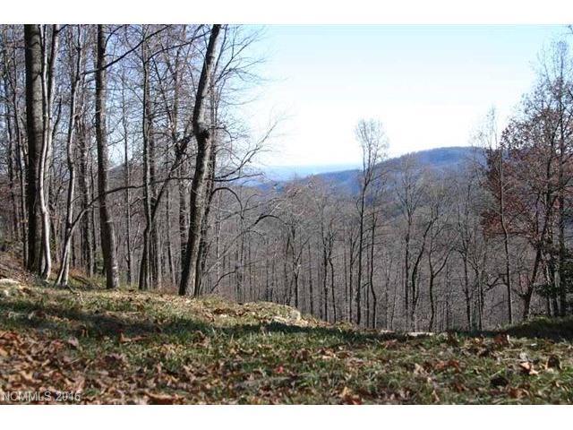 21 High Cliffs Trail #32, Black Mountain, NC 28711 (#3152164) :: Rinehart Realty