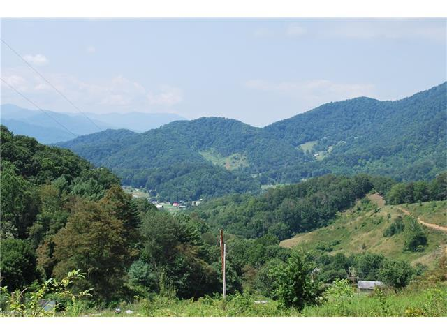 1877 Wilson Cove Road, Canton, NC 28716 (#3153436) :: Exit Mountain Realty