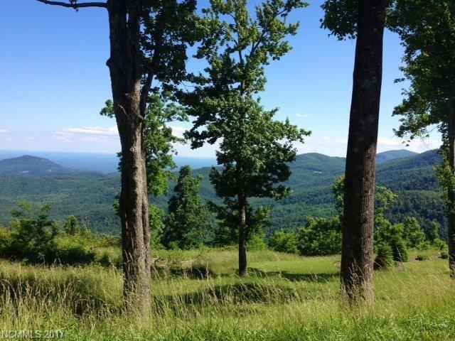 136 High Cliffs Trail #7, Black Mountain, NC 28711 (#3153820) :: Puffer Properties