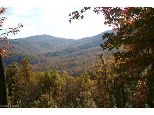 20 High Cliffs Trail #33, Black Mountain, NC 28711 (#3155459) :: Rinehart Realty