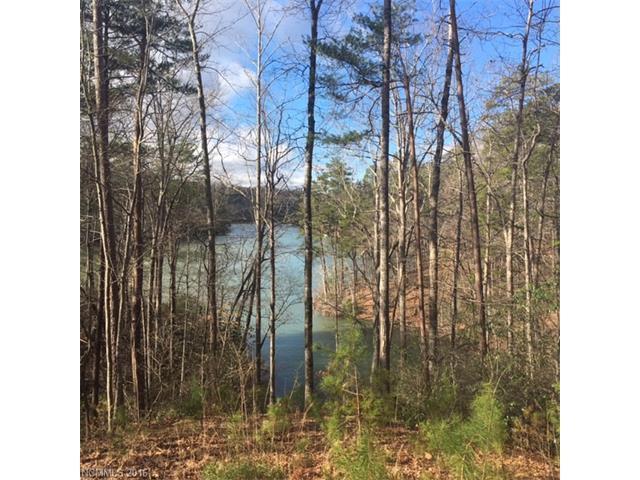 1 Jackson Cove Parkway, Mill Spring, NC 28756 (#3157427) :: Burton Real Estate Group