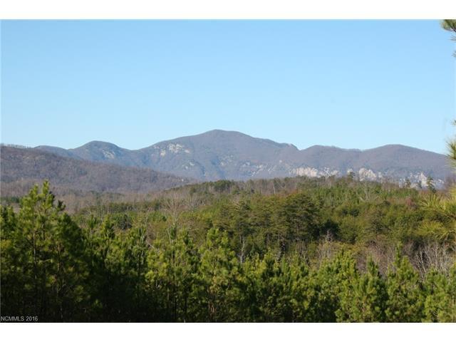 14 Sunset Drive #14, Mill Spring, NC 28756 (#3158292) :: Robert Greene Real Estate, Inc.