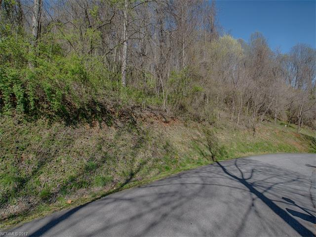 Lot 17 Bob White Loop, Waynesville, NC 28786 (#3158636) :: Stephen Cooley Real Estate Group