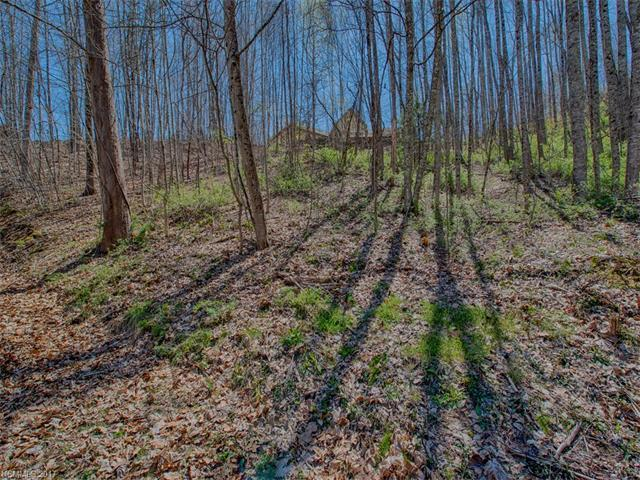 Lot 15 Bob White Loop, Waynesville, NC 28786 (#3158647) :: Stephen Cooley Real Estate Group