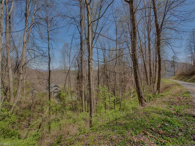 Lot 24 Quail Mountain Lane, Waynesville, NC 28786 (#3158668) :: Stephen Cooley Real Estate Group