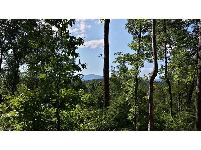 LOT 23 S Cross Creek Trail, Mill Spring, NC 28756 (#3158712) :: RE/MAX Four Seasons Realty