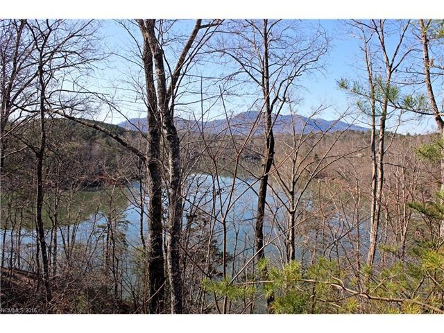 Lot 3 Mountain Parkway Lot 3, Mill Spring, NC 28756 (#3158814) :: Stephen Cooley Real Estate Group
