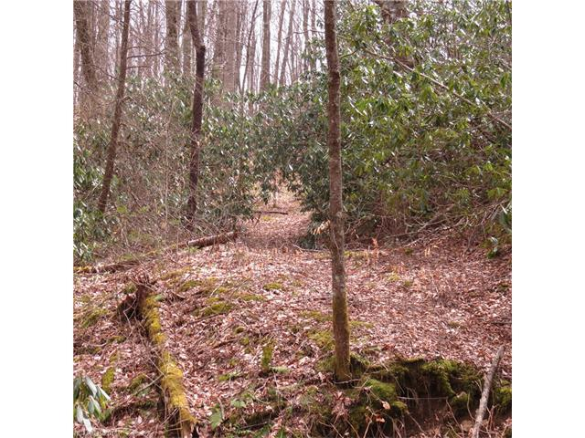 00 Oswego Way, Waynesville, NC 28785 (#3160353) :: Exit Mountain Realty