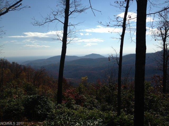 9 High Cliffs Trail #5, Black Mountain, NC 28711 (#3160649) :: Exit Mountain Realty