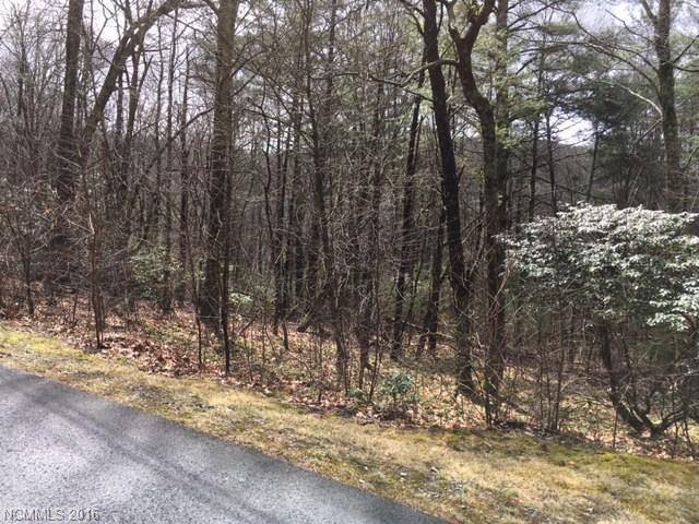TBD White Oak Forest Road Lot Ee, Fairview, NC 28730 (#3162421) :: LePage Johnson Realty Group, LLC