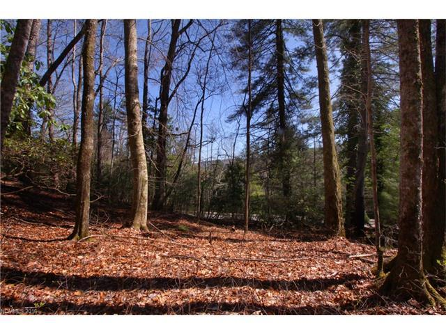 Lot 61 Deerlake Road #61, Brevard, NC 28712 (#3162541) :: Puffer Properties