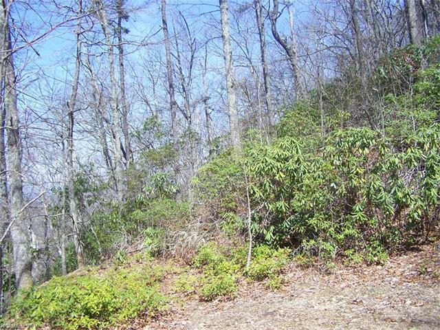 Lot 7 Anglers Ridge #7, Waynesville, NC 28786 (#3163004) :: Francis Real Estate