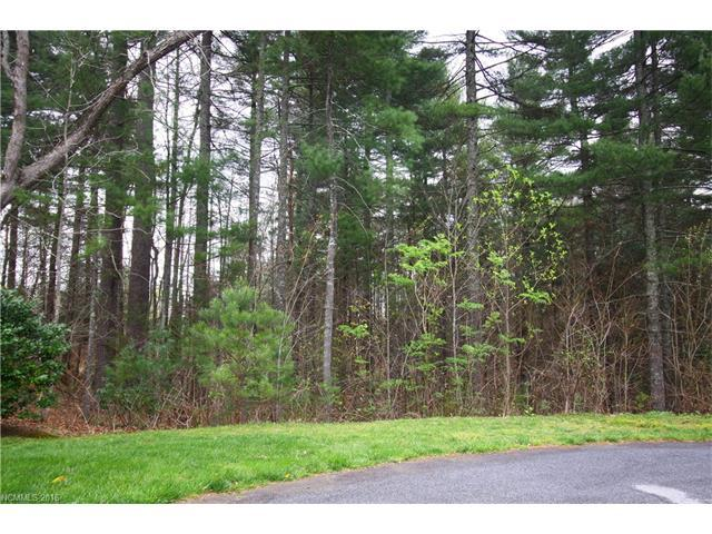 Lot19 Daylily Drive #19, Hendersonville, NC 28739 (#3166236) :: Exit Mountain Realty