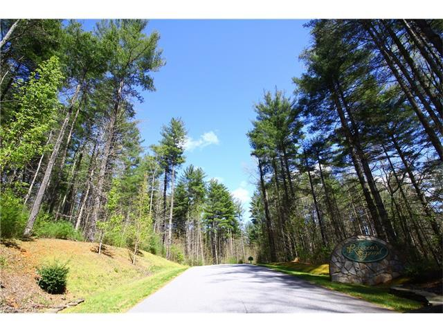 Lot20 Daylily Drive #20, Hendersonville, NC 28739 (#3166268) :: LePage Johnson Realty Group, LLC