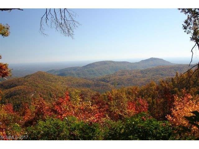 21 Cliffledge Trail #28, Black Mountain, NC 28711 (#3166355) :: Rinehart Realty