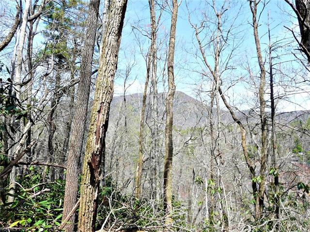 Lot 9 Heritage Drive S1 L9, Sapphire, NC 28774 (#3167702) :: Miller Realty Group