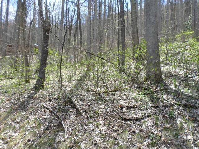 Lot 16 Dogwood Drive #16, Maggie Valley, NC 28751 (#3169312) :: LePage Johnson Realty Group, LLC