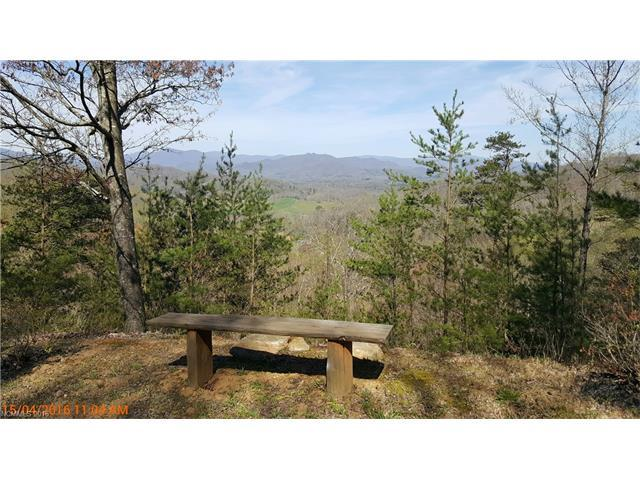 32 A Cat Tail Lane, Waynesville, NC 28786 (#3170460) :: Exit Mountain Realty