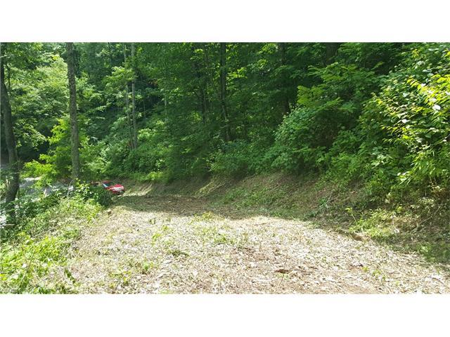 E25 Bear Track Trail, Maggie Valley, NC 28751 (#3173042) :: LePage Johnson Realty Group, LLC