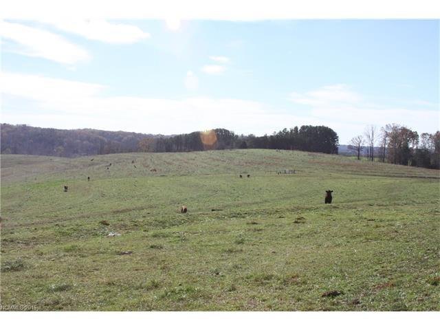 000 Tom Camp Road 93 Acres+/-, Rutherfordton, NC 28139 (#3173625) :: Burton Real Estate Group