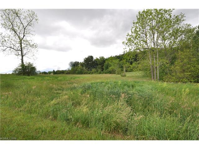 000 Banner Farm Road Lot 01, Horse Shoe, NC 28742 (#3174076) :: The Ramsey Group